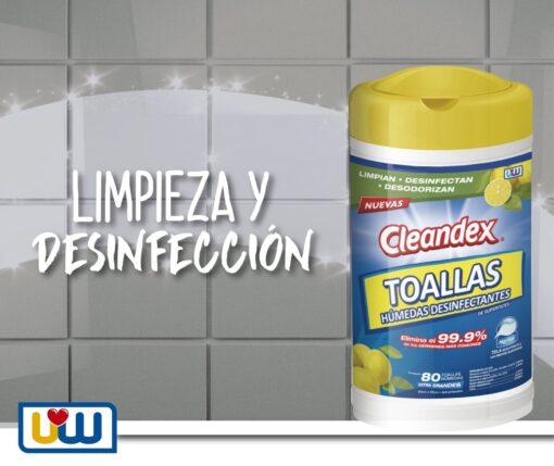 """cleandex <h1 class=""""item-title__primary """">Cleandex Limón Antibacterial Toallas Para Superficies, Caja 6pz</h1> ATRIBUTOS Toallas Húmedas Cleandex Limón para superficies  + Elimina el 99.9% de los gérmenes más comunes. + Limpian, desinfectan, desodorizan. + Extra Grandes. + Tela resistente y suave. _____________________________________  Consume lo hecho en México.  <strong>PRECIO ESPECIAL A MAYORISTAS</strong> <a href=""""mailto:mayoreo@comprastodo.com""""><strong>mayoreo@comprastodo.com</strong></a> Cleandex Limón Toallas Antibacterial Para Superficies, Caja 6pz"""